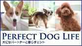 Perfect Dog life
